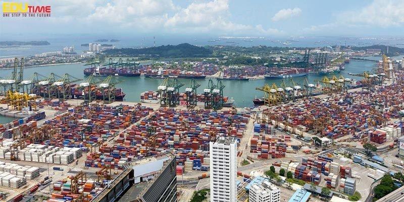 ngành quản lý chuỗi cung ứng và vận chuyển